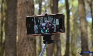 Hutan Pinus Imogiri, Bantul